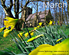 Desktop Wallpaper: March Picture 4