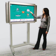 The Inclusive Interactive Plasma Screen